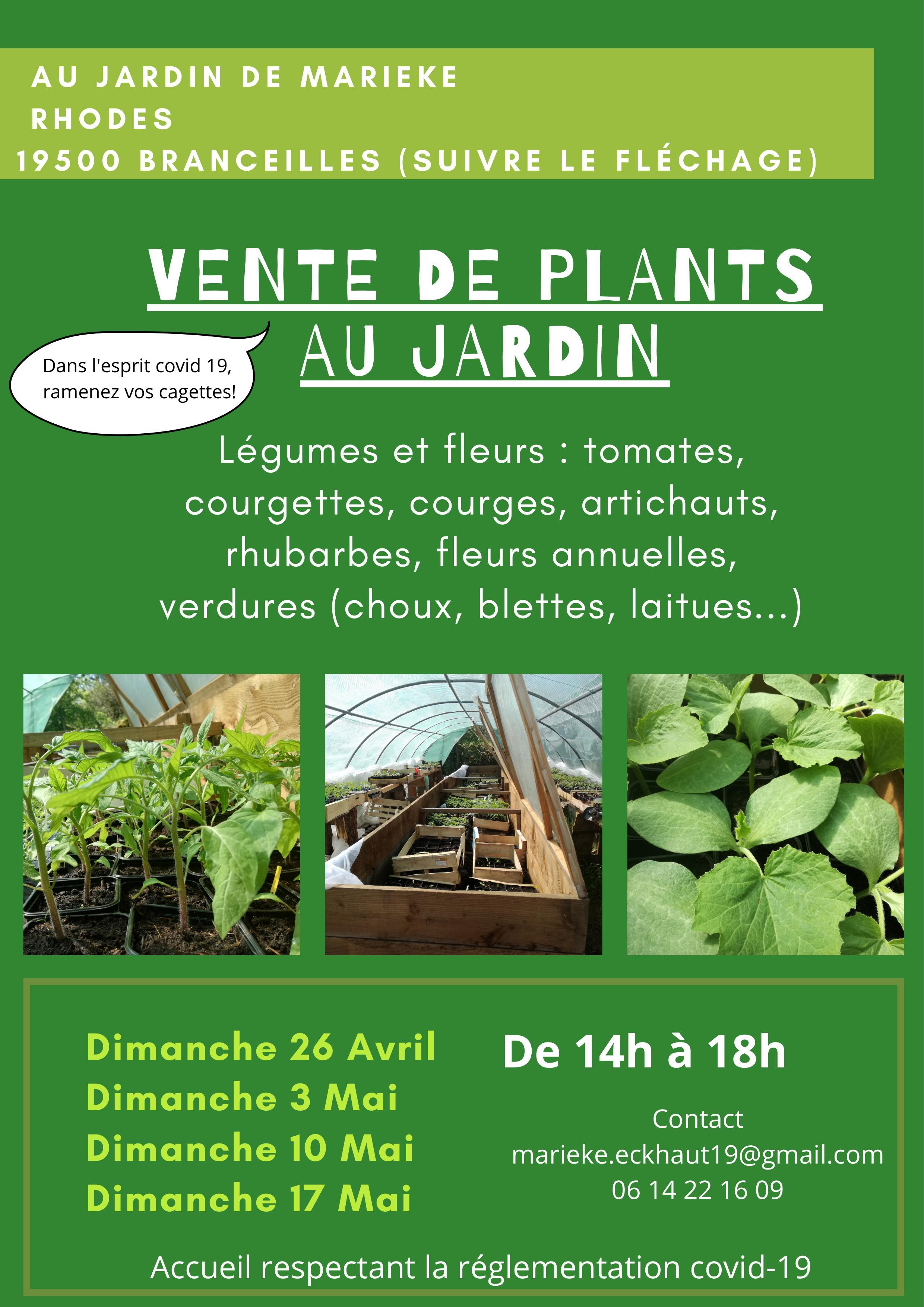 Vente de plants de légumes et de fleurs - Rhodes